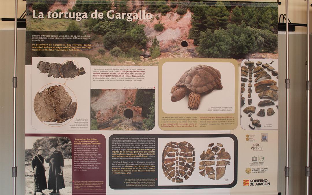 El panel explicativo de la Tortuga de Gargallo. / B. Severino