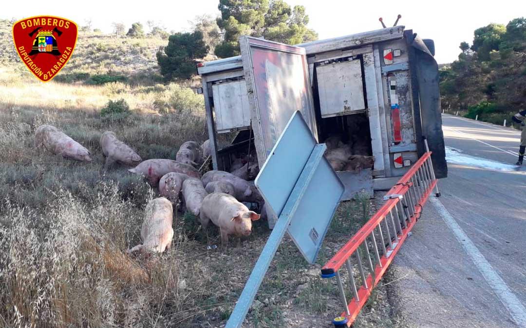 Un camionero herido leve tras salirse de la vía A-230 en Caspe / DPZ