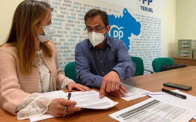 El Partido Popular pide el apoyo de la DPT al sector ganadero