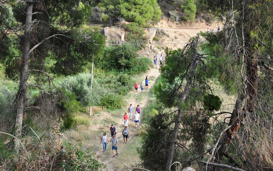 Varios vecinos fueron hasta la olivera en marcha senderista. J.L.