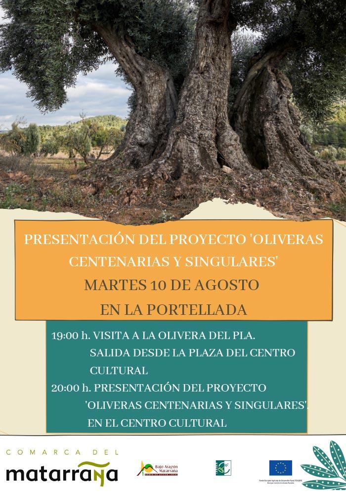 «Oliveras centenarias y singulares» en La Portellada