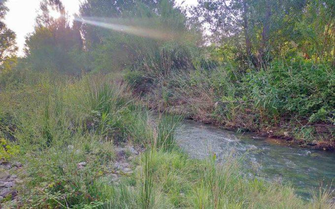 La CHE inicia los trabajos de mejora de la dinámica fluvial del río Martín en Oliete