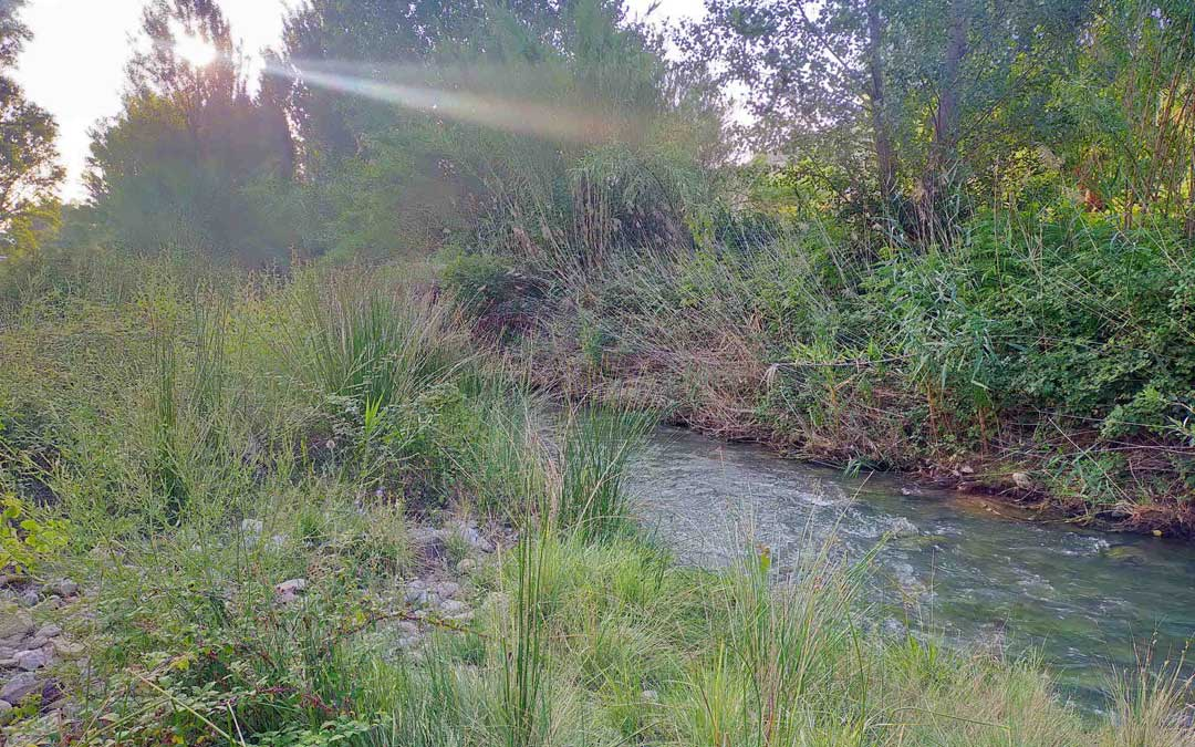 Una parte del cauce del río Martín. / CHE