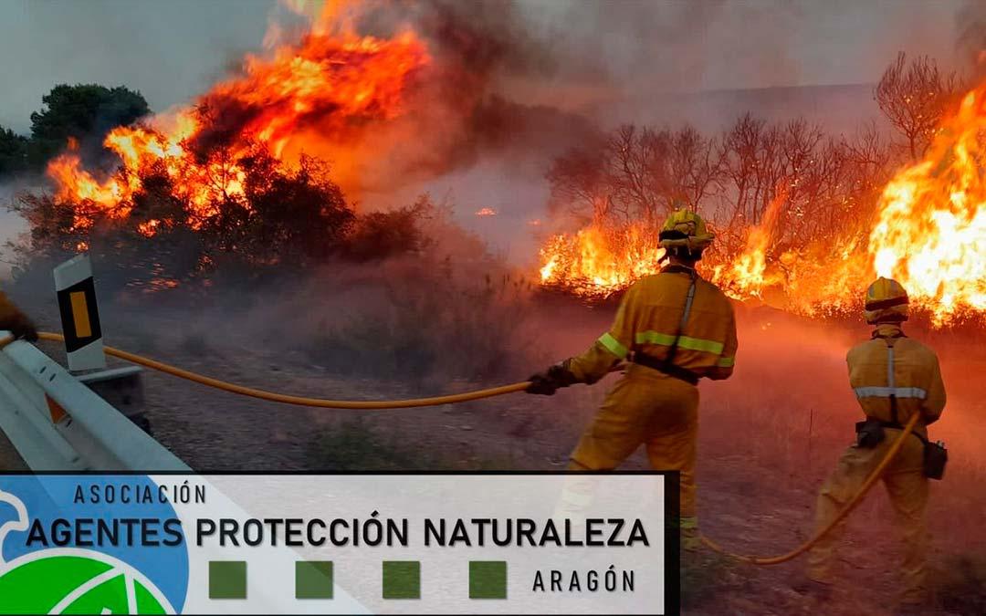 Imagen de los bomberos trabajando en la zona afectada / Agentes de Protección de la Naturaleza