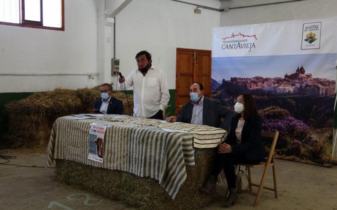Cantavieja celebra la 27ª subasta nacional de ganado vacuno en el marco de su feria