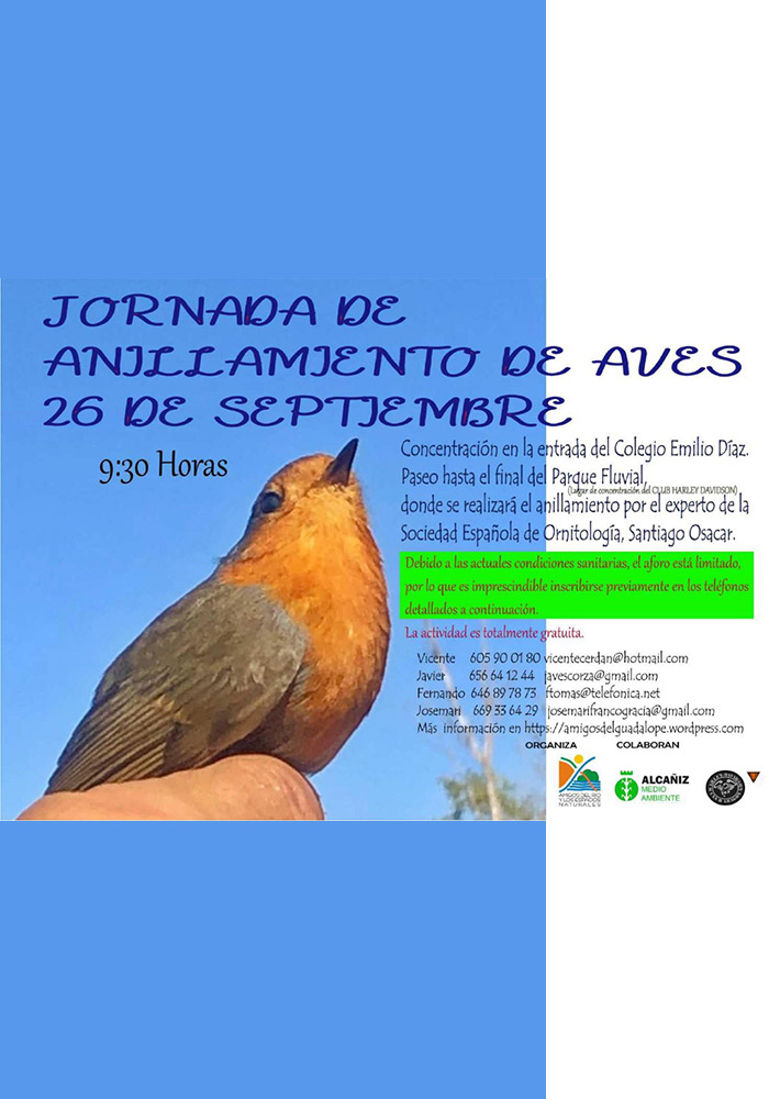 Jornada de Anillamiento de Aves en Alcañiz