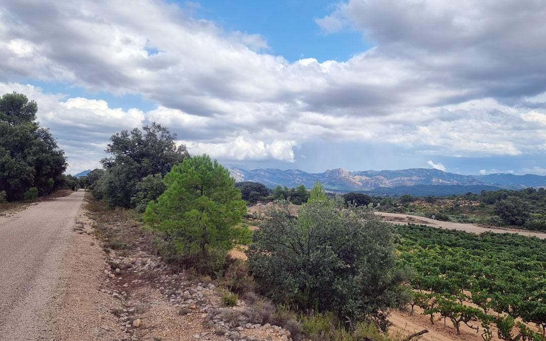 Paisajes vía verde Val de Zafán