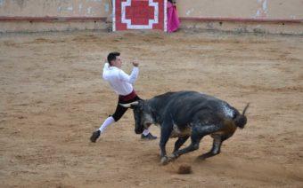 Sergio García González gana el concurso goyesco de recortadores David Cortés de Albalate