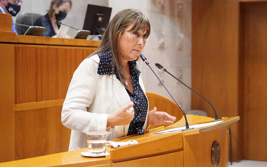 Sira Repollés en las Cortes de Aragón / Cortes