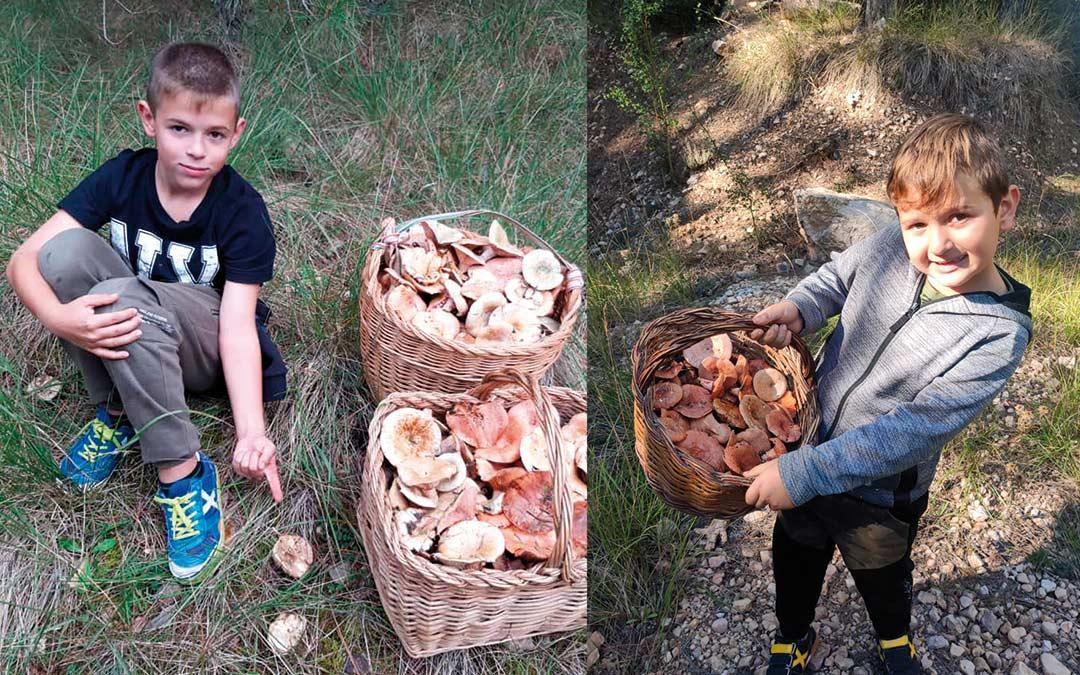 Los hermanos Héctor e Iván Roglán Bosque junto a varias cestas de rebollones en los Puertos de Beceite el fin de semana./ I.B.
