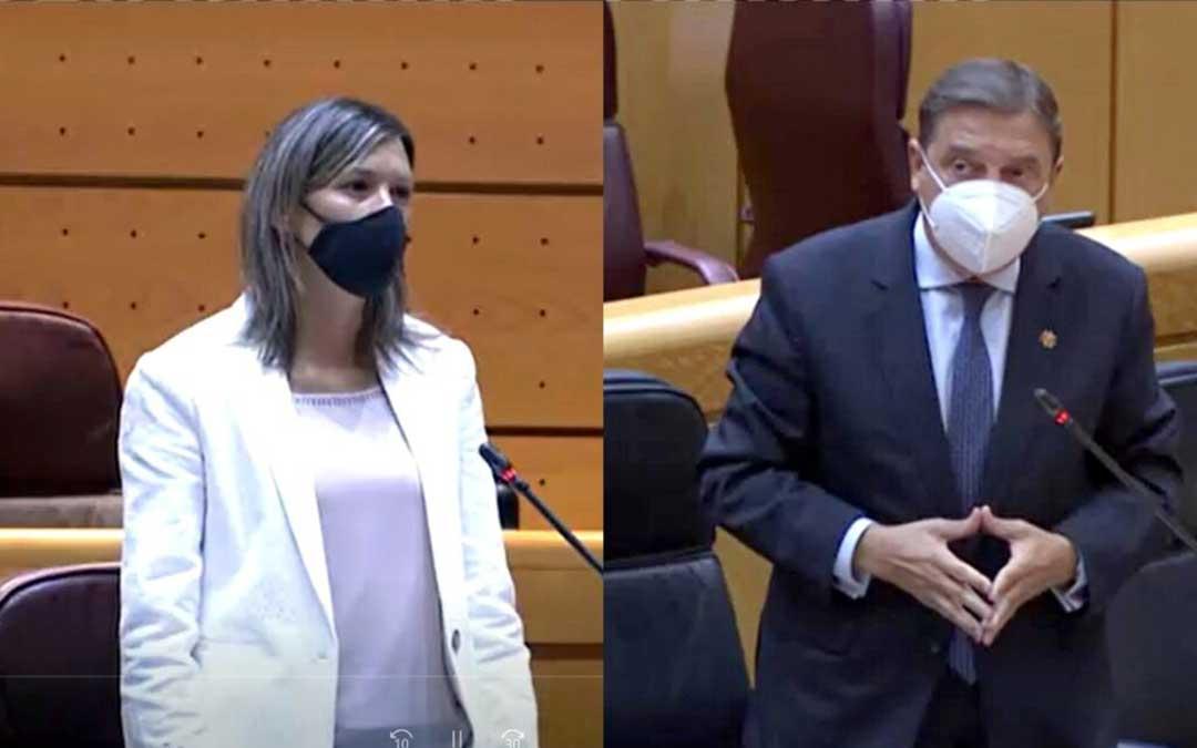 La senadora de Teruel Existe, Beatriz Martín, y el Ministro Luis Planas, durante su intervención en el Senado. / TE