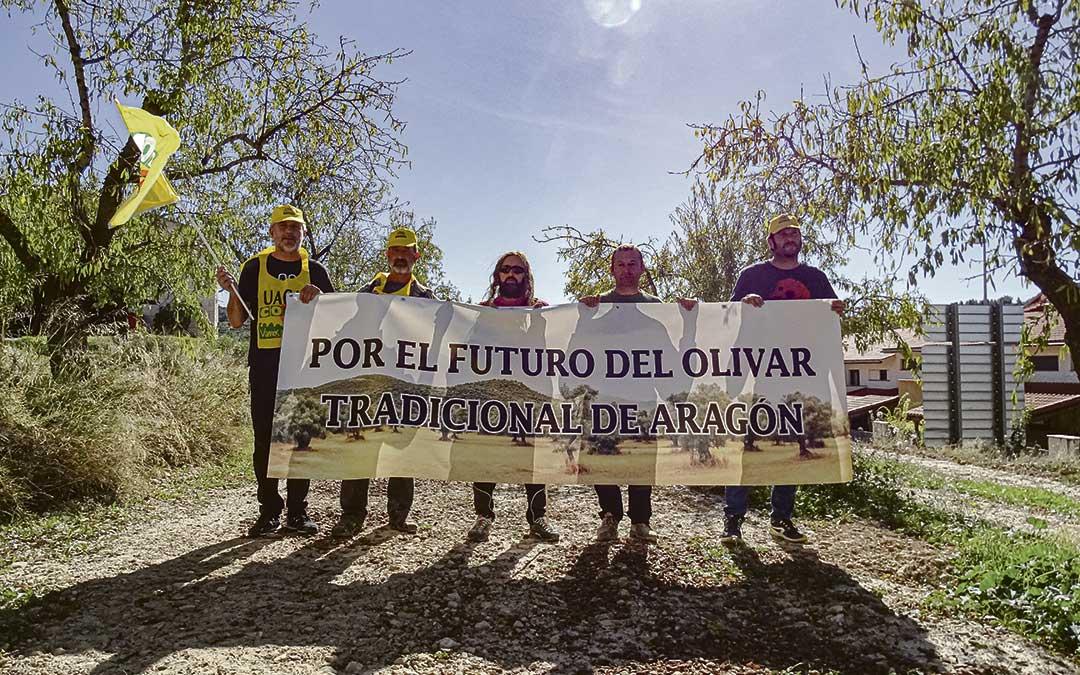 Un grupo de agricultores bajoaragoneses reunidos en Valdealgorfa con La COMARCA para analizar las reivindicaciones de la manifestación por la PAC. / L. Martínez
