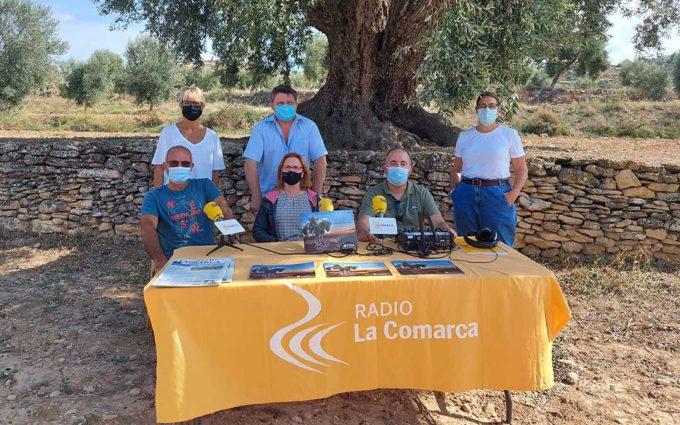 Hoy es tu día: especial oliveras centenarias en La Codoñera