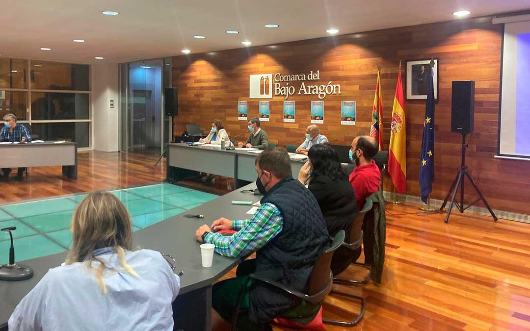 Durante el desarrollo de la sesión plenaria en la sede de la Comarca del Bajo Aragón. / Comarca del Bajo Aragón
